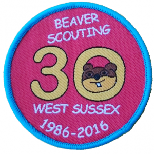 beavers30thBadge